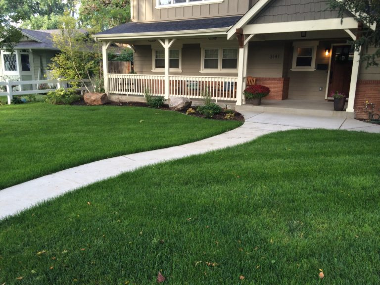 Yard After Landscape Company Hired